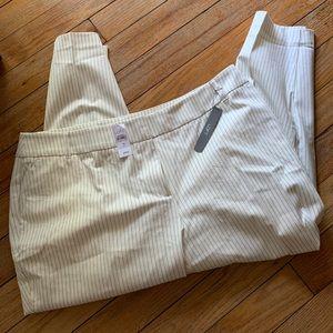 NWT Loft Marissa Pin-Striped Pants (20)